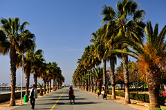 Παροχές φιλοξενίας σε επισκέψεις επιθεώρησης για C&I στην Κύπρο