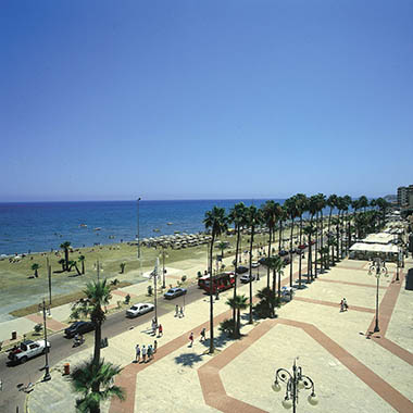 4.3 - 94.Larnaka Palm Tree Promenade