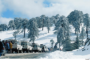 CD19 011-TROODOS snow